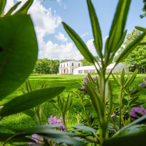 Widok na park i Pałac